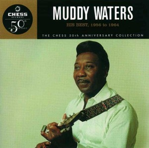 muddy-waters-cover-art00