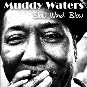 muddy-waters-cover-art06