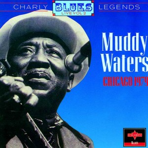 muddy-waters-cover-art09